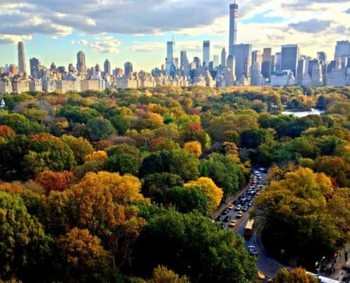 Cosa Vedere a Central Park
