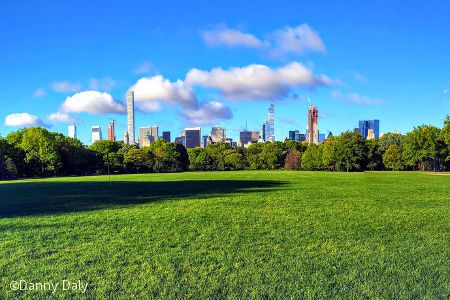 Great Lawn Central Park