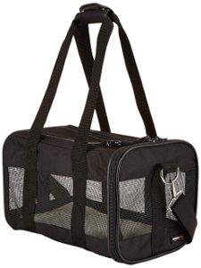 Lightweight pet carrier